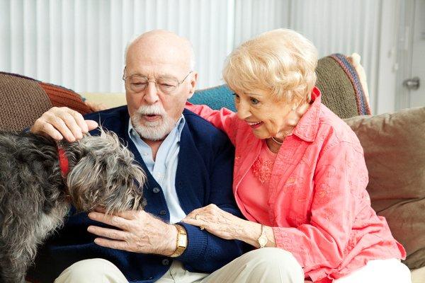 Man's Best Friend: Dog Therapy in Dementia
